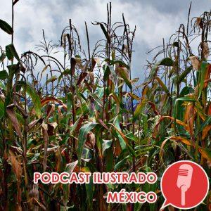 Podcast ilustrado: La Milpa